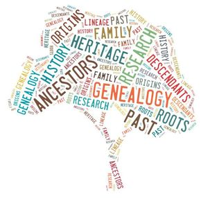 What are MLM Genealogy Leads and Lists?